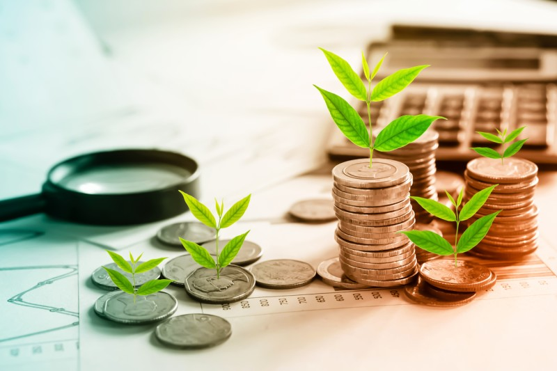 Grow Money with Investment Plan