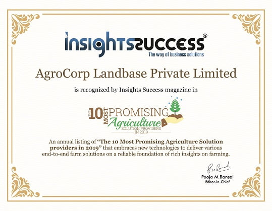 recognised by insight success